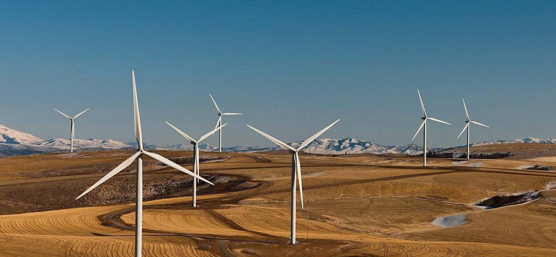 What Type of Land Is Best for Wind Farming?
