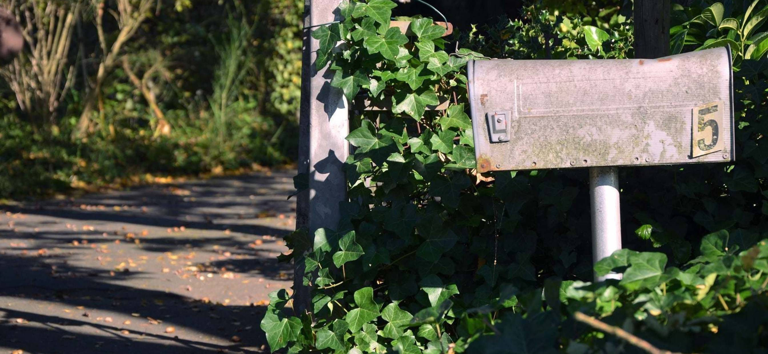 15 Reasons Direct Mail is Effective in Land Marketing