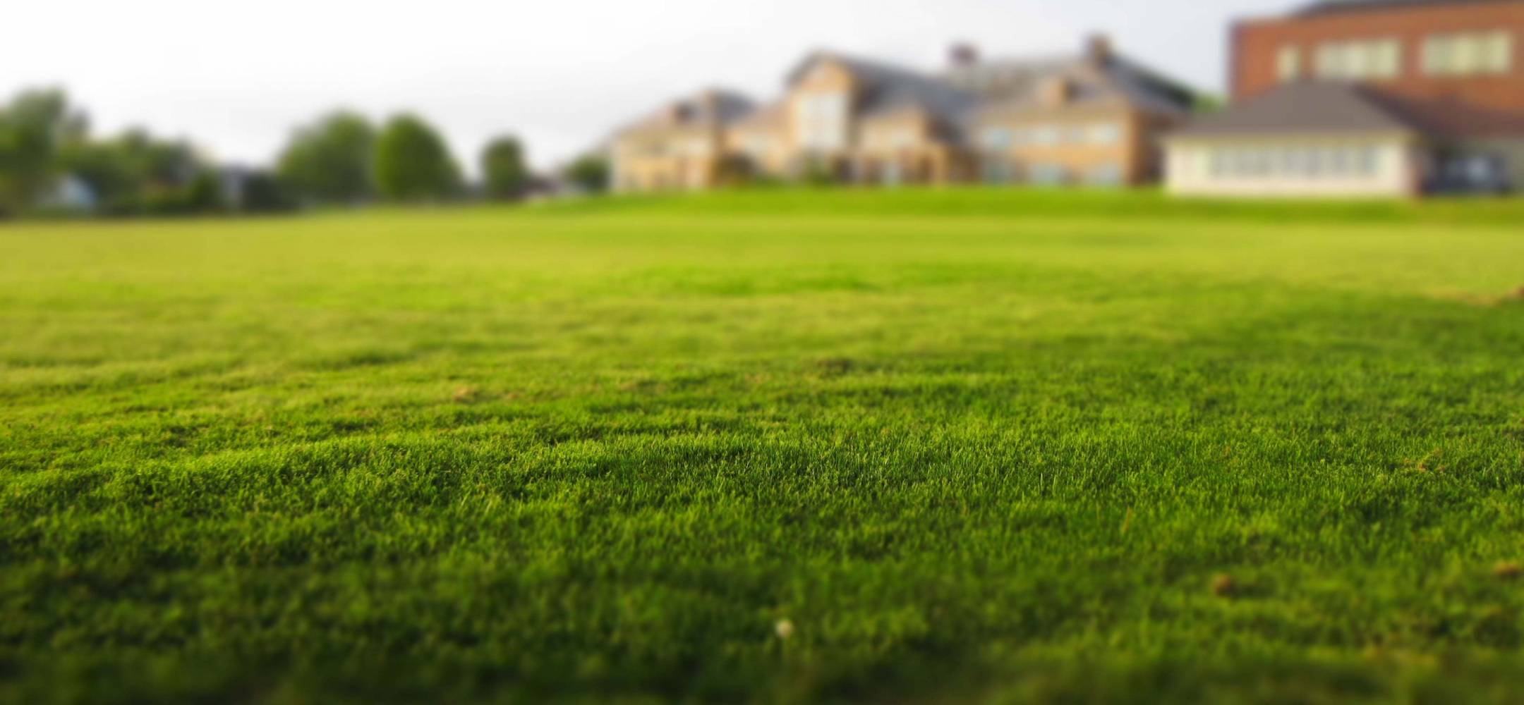 Is Selling Land Different Than Selling Houses?