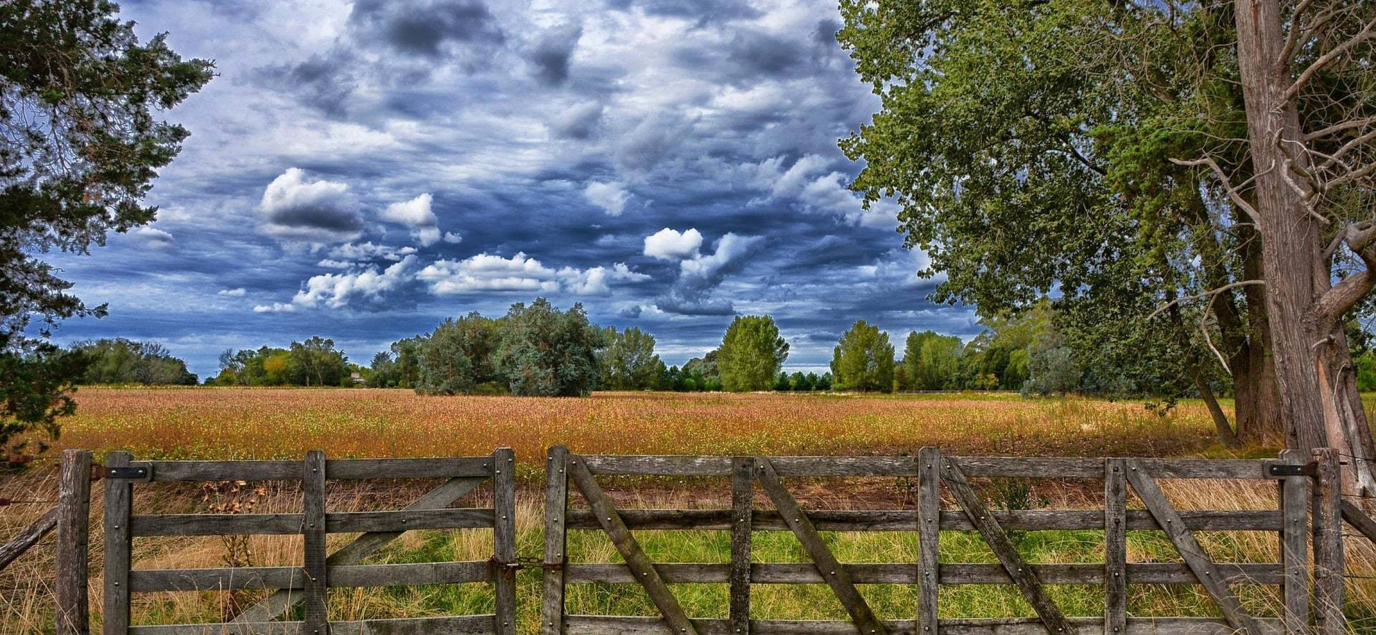 What to Do When Your Land Isn't Selling