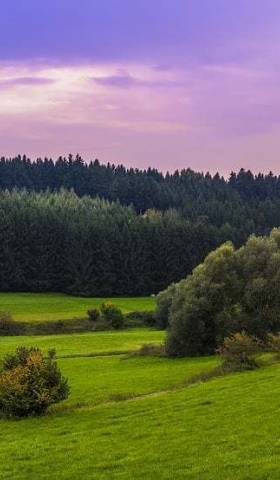Here's Why Investing in Land Is a Good Idea