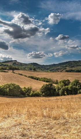 What to Expect: the Land Buying Process