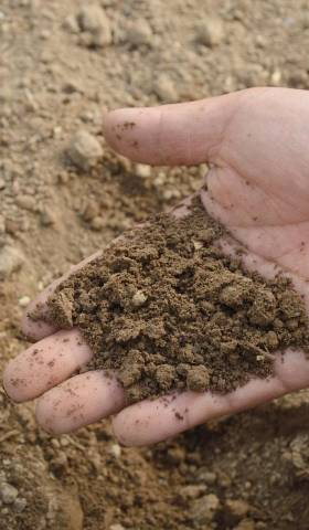 Why You Should Have Your Soil Sampled and Tested