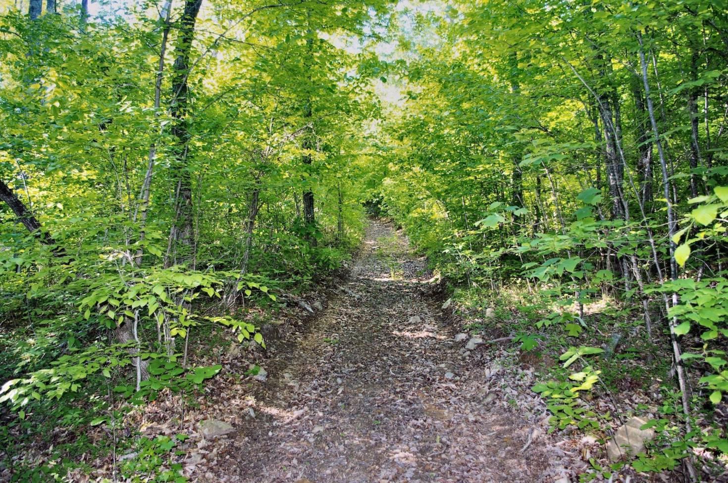 Trail of Tears Trail