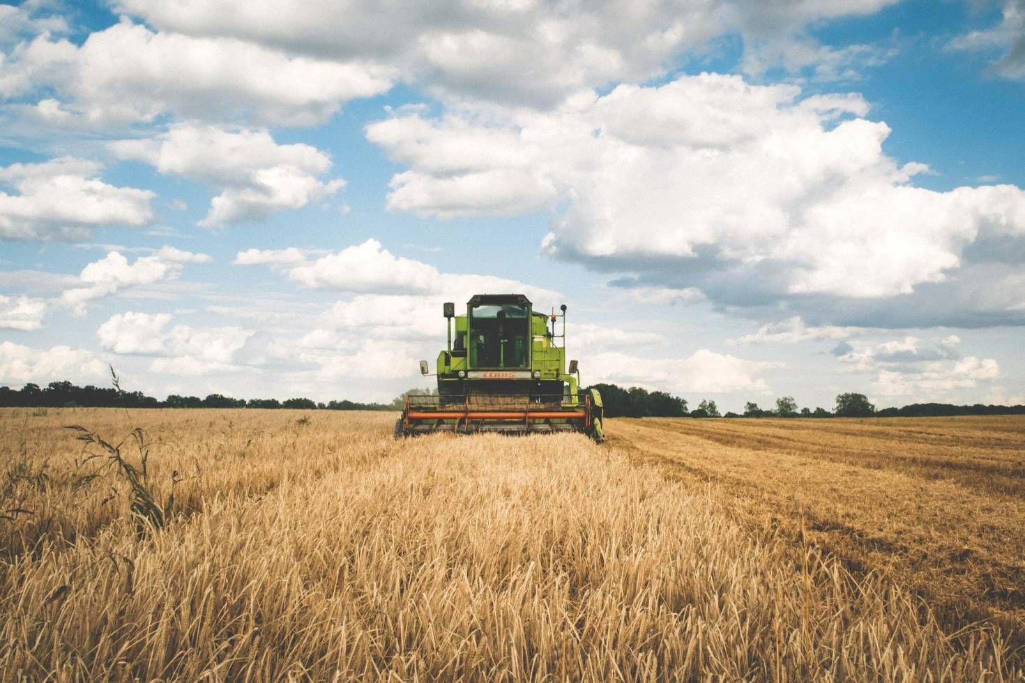 Harvesting Farmland