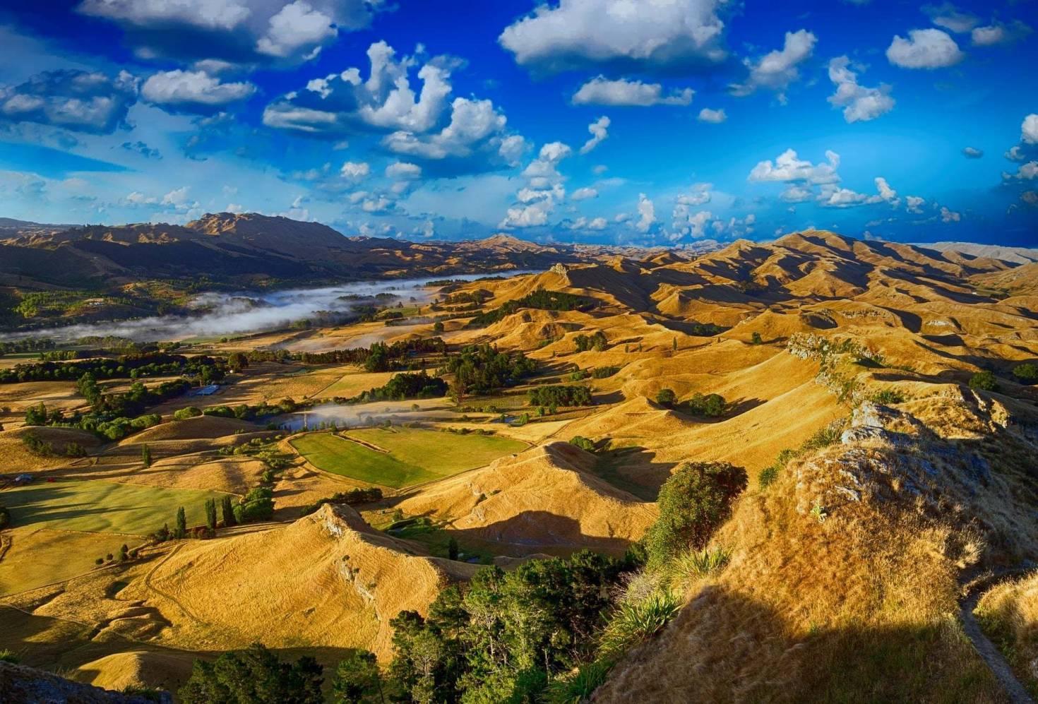 Landscape Overlook
