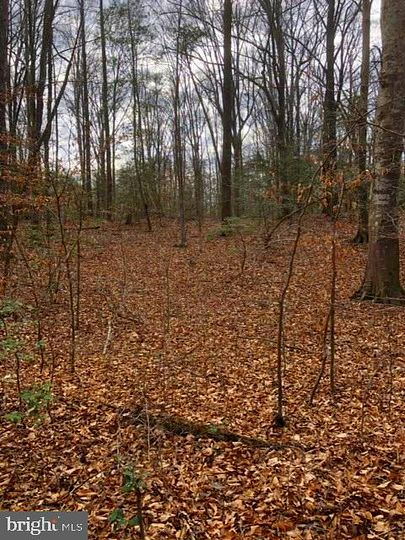3.1 Acres of Residential Land for Sale in Nanjemoy, Maryland