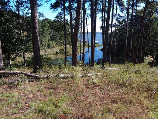 0.51 Acres of Mixed-Use Land for Sale in Eufaula, Alabama