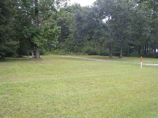 68.7 Acres of Land for Sale in Kirbyville, Texas