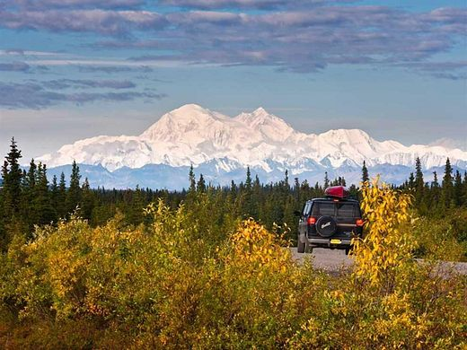 38.5 Acres of Recreational Land & Farm for Sale in Anderson, Alaska