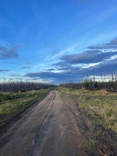 75.5 Acres of Recreational Land for Sale in Anderson, Alaska